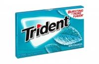 Trident Wintergreen